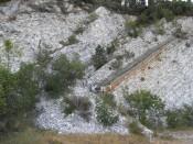 Bonarelli Level (i.e., Oceanic Anoxic Event 2) in the Scaglia Bianca limestone in Furlo Gorge, Italy. This is