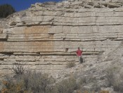 Outcrop of the Fort Hays Limestone Member of the Niobrara Formation along the bank of the Arkansas River in Pueblo, CO. Matt Corbett for scale.