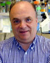 Robert M Krug